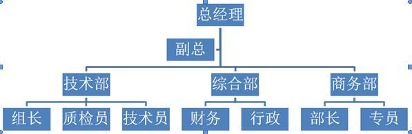 小型科技公司组织结构图